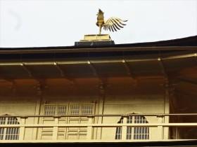 てっぺんの鳳凰は、天翔十字鳳の構え